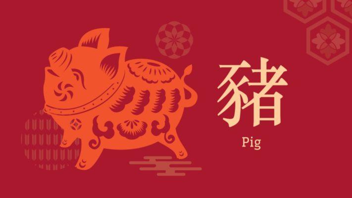 signe-astrologique-chinois-cochon