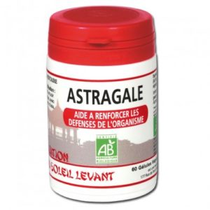 astragale-plante-chinoise-gelules