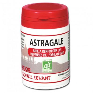 astragale-plante-chinoise-gelules