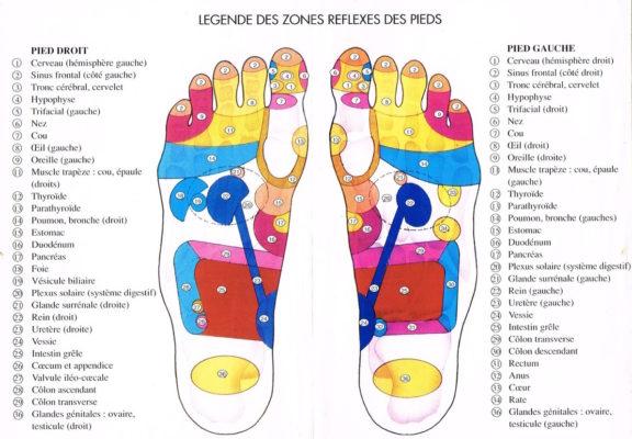 planche-reflexologie-pieds