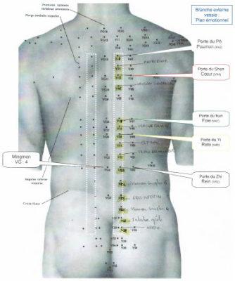 points-acupuncture-du-dos