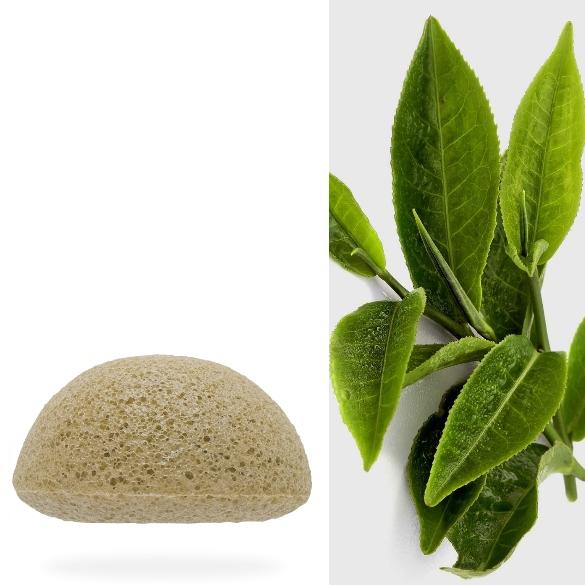 eponge-konjac-bio-the-vert