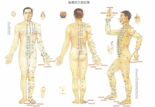 planche-points-acupuncture-corps-humain