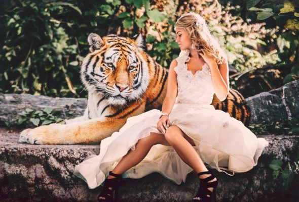 tigre-sauvage-foret-femme-blonde-en-jupe