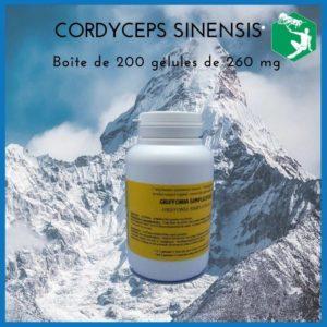 boite-cordyceps-sinensis-la-royale