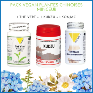 pack-vegan-minceur-chinoise