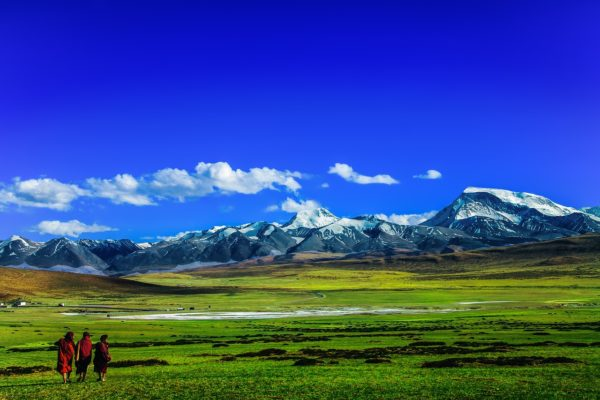 bouddhisme-tibet-medecine-traditionnelle